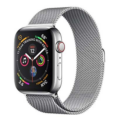 Apple Watch Series 4 (Stainless Case 40 mm)