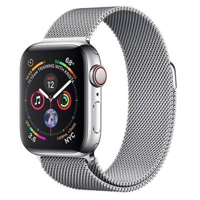 Apple Watch Series 4 (Stainless Case 44 mm)
